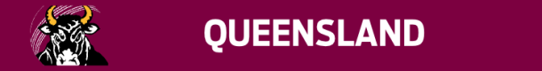 queenslandbanner